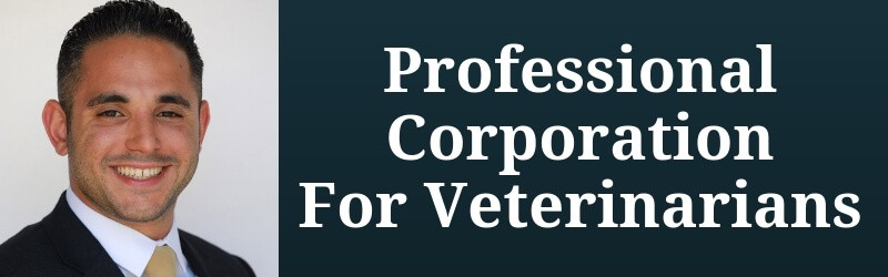 Professional Corporation for Veterinarians